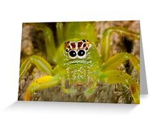 Bright green spider with unusual markings Greeting Card