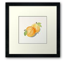 Orange Apricots Watercolor Painting. Framed Print