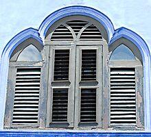 The Blue Window by Marie Watt