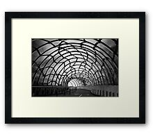 Tangled in an urban web Framed Print