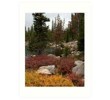 Lakeside Foliage Art Print