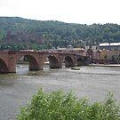 Old Bridge, Heidelberg  by Elena Skvortsova