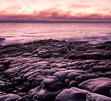 Stepping Stones to the Sea by Heather-Lee Reid
