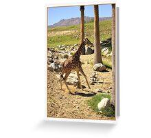 Hot Legs Greeting Card