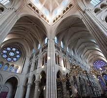 Cathedrale Notre Dame de Laon 2 by Chris Tarling