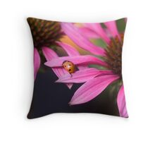 Crossing over! Throw Pillow