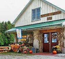 Primitive Country Barn by Deborah  Benoit
