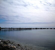 Rapid Bay Jetty by Deb  Savage