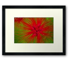 Brush Bristle Framed Print