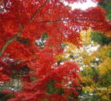 Autumn in Hiroshima Sticker