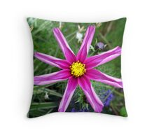 Simple Beauty no.3 Throw Pillow