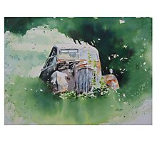 Scrapped Car Resting Beside a Tree Photographic Print