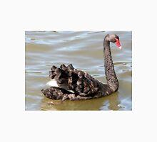 Fabulous Feathers, Black Swan, Lake Ginninderra, A.C.T. Australia. T-Shirt