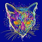 candy cat by frederic levy-hadida