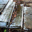 """Forgotten Steps"" by waddleudo"