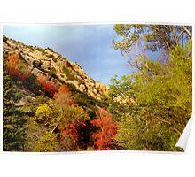 Autumn in American Fork Canyon, Utah Poster
