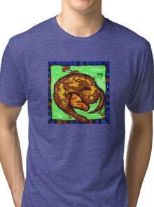 OLD DOG BITCH CARPET  Tri-blend T-Shirt