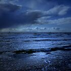 BLUE WINDS BLOWING IN ON THE OCEAN by leonie7