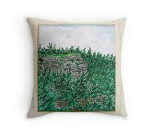 Echo Ridge Throw Pillow