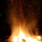 Bonfire by Fern Design