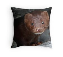 Sandy Whiskers, Soulful Eyes Throw Pillow