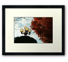 Lamp Post in Autumn Framed Print