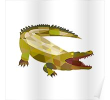 Alligator Crocodile Gaping Mouth Low Polygon Poster