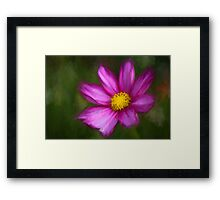 Yellow centre Framed Print