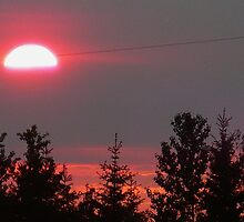 Smoky July Sunset by Linda Bianic