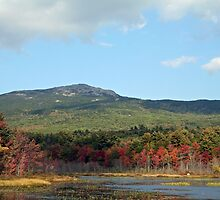 Mt. Monaugnauk, New Hampshire by Linda Jackson