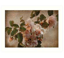 rose bower Art Print