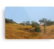 Cambria Fields Metal Print