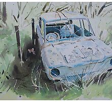 Scrapped Hillman Imp with Butterfly by Andrew Lyon