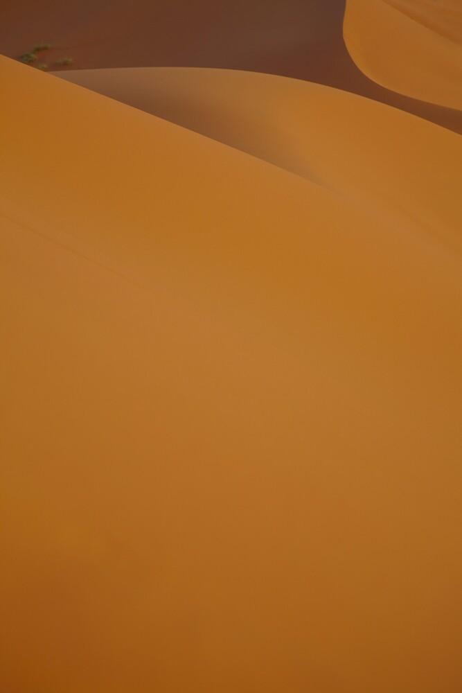Erg Chebbi - Sand dunes at sunset by citrineblue