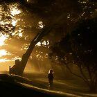 Towards the Light by alexschwab