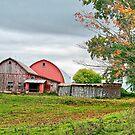 Overcast Fall Day by Deborah  Benoit