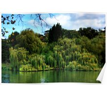 weeping willows Poster