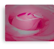 Delicate  yet  Recilant Canvas Print