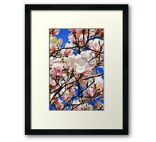 Magnolia. Framed Print