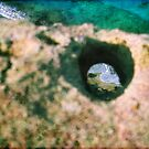 Sea in a hole by Silvia Ganora