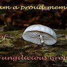 Member banner Fungilicious Group by Anne-Marie Bokslag