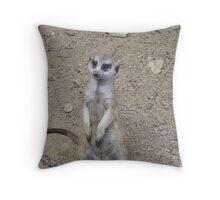Meerkat Watcher Throw Pillow