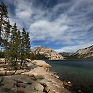 Tenaya Lake by Laurie Search