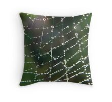 Web Gems Throw Pillow