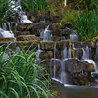 Regents park falls by Richard Keech