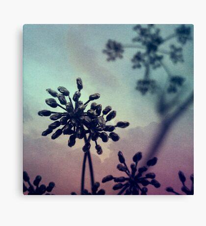 Gravity Bloom Canvas Print