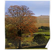 Dartmoor: Autumn Colours Poster