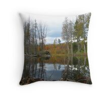 Beaver pond in fall Throw Pillow