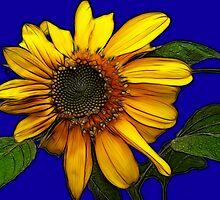 Sunflower On Blue by Kay  G Larsen