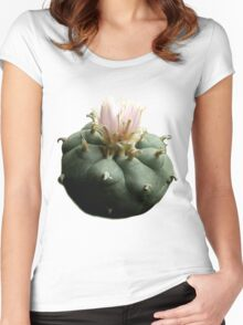 Peyote Women's Fitted Scoop T-Shirt